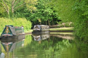 Views from our mooring at the Saltisford Arm.
