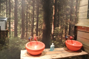 The mens room wash bowls.  Go faster red?