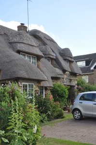Look at the detail in this thatch