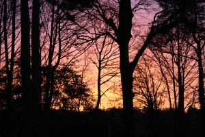 Sunrise in Bandon