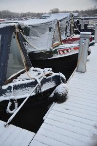 NB Jasmine Weyr in the snow.