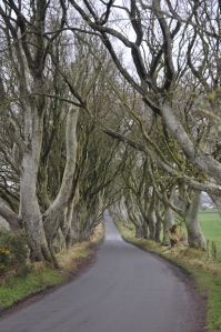 The Dark Hedges.  Some of The Game of Thrones was filmed here.