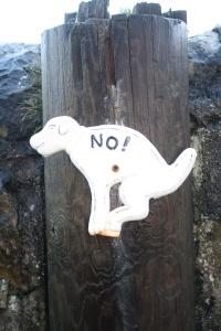 No!  Pick up your poop!