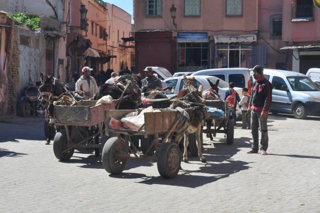 Public transport Morrocan style.