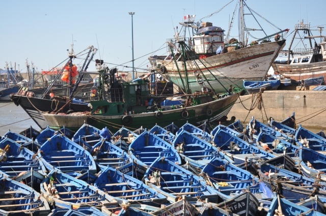 The port.   It's a requirement that the boats are blue.   Blue and white are the representative colours of Essaouira