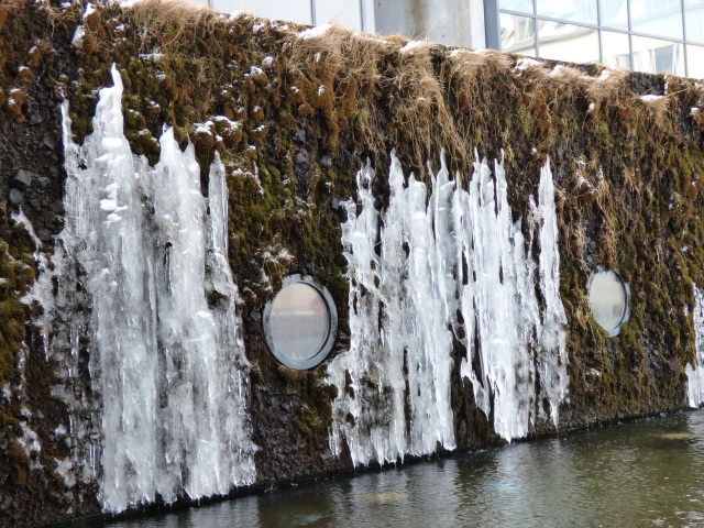 Vertical planter - icy.